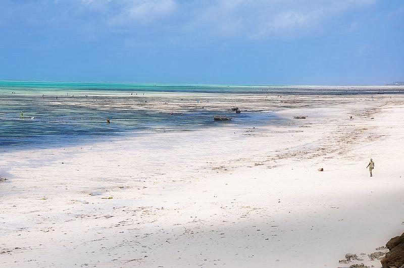Zanzibar island- zanzibar beach